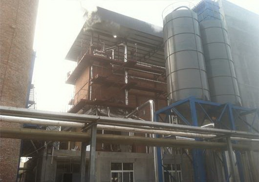 内循环流化床乐动体育app下载Internal circulating fluidized bed boiler